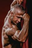 De mannelijke spannende handen van bodybuilderbicepsen Royalty-vrije Stock Fotografie