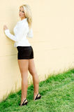 De mannequin van de blonde Royalty-vrije Stock Fotografie