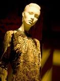 De mannequin van de opslag in Venster stock fotografie