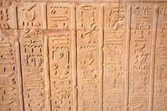 De manuscripten van Hierogliphic Royalty-vrije Stock Afbeelding