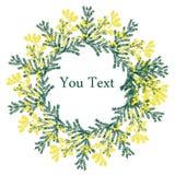 8 de março cartão Dia internacional do ` s das mulheres A mão tirada floresce a mimosa Vetor Fotos de Stock Royalty Free
