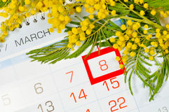 8 de março cartão - a mimosa floresce sobre o calendário com data moldada do 8 de março Fotos de Stock