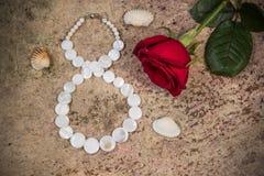 8 de março, flor da rosa do vermelho e shell Imagem de Stock Royalty Free