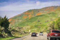 16 de março de 2017 - Los Angeles /CA/USA - conduzindo nos montes diretos de um estado a outro cobertos nos wildflowers fotografia de stock