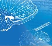 De mariene illustratie van de zeeschelp blauwe golf Stock Afbeelding