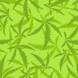 De marihuana is een naadloos patroon Achtergrond van verdovende installatie Royalty-vrije Stock Foto