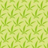 De marihuana verlaat naadloos patroon Vector Verdovende achtergrond Royalty-vrije Stock Afbeelding