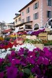 De markt van bloemen stock foto's