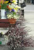 De markt van bloemen Stock Afbeelding