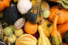 De markt van het voedsel Stock Fotografie