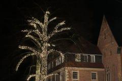 De markt van Kerstmis in Duitsland royalty-vrije stock afbeelding