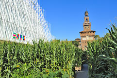 De Markt van Milan Expo 2015 - Expogate en het Kasteel Stock Fotografie