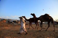 De Markt van Pushkar stock foto