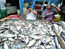 De Markt van de Stadsvissen van Panama stock fotografie