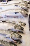 De markt van vissen royalty-vrije stock afbeeldingen