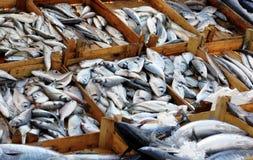 De Markt van vissen Stock Foto's