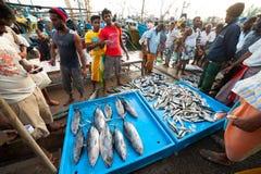 De markt van vissen Royalty-vrije Stock Foto