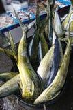 De markt van vissen in Hongkong Stock Foto's