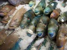 De markt van vissen in Hongkong Royalty-vrije Stock Fotografie