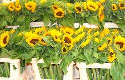 De marktkraam van zonnebloemenhelianthus, Jordaan, Amsterdam, Holland Stock Foto's