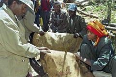 De marktverkoper verkoopt leer Ethiopische markt royalty-vrije stock fotografie