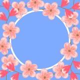 8 de marzo Día internacional de las mujeres Cherry Blossoms Flores rosadas Plantilla del diseño para las tarjetas de felicitación stock de ilustración