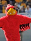 De mascotte van de Kardinalen van Louisville royalty-vrije stock afbeeldingen