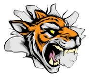 De mascotte van tijgersporten het uitbreken Royalty-vrije Stock Afbeeldingen