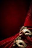 De maskers van Carnaval Royalty-vrije Stock Foto's