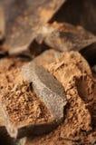 De massa van de cacao en cacaopoeder Royalty-vrije Stock Fotografie