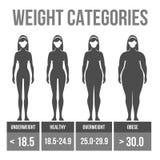 De massaindex van het vrouwenlichaam. Royalty-vrije Stock Foto's
