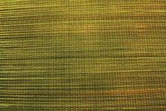 De matachtergrond van het bamboe Stock Fotografie