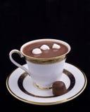 De Mateloosheid van de chocolade Royalty-vrije Stock Foto