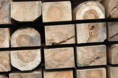De materialen van de boom royalty-vrije stock afbeeldingen