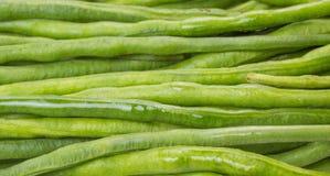 De materialen van een boonvoedsel het is geïsoleerdc op een witte achtergrond Stock Foto's