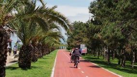 17 DE MAYO, BATUMI, GEORGIA: El terraplén de la ciudad de vacaciones de Batumi, en quien las palmeras crecen, gente y ciclistas d almacen de video