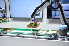 De mechanische robot met kunstmatige intelligentie sorteert producten op de transportband stock afbeelding