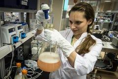 De medewerker van het vrouwenlaboratorium met fles in van hem dient biochemie in stock fotografie