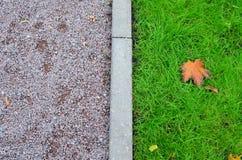 In de medio-herfst Stock Foto's