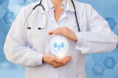 De medische arbeider beschermt de nieren royalty-vrije stock afbeelding