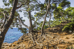 De mediterrane kust royalty-vrije stock foto's