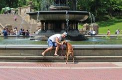 De meester geeft het hondwater in Central Park royalty-vrije stock foto's