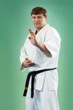 De meester van de karate royalty-vrije stock fotografie