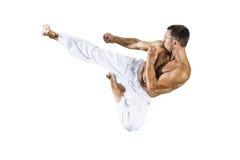 De meester van taekwondovechtsporten Royalty-vrije Stock Afbeelding