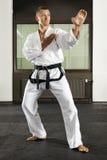 De meester van vechtsporten stock foto
