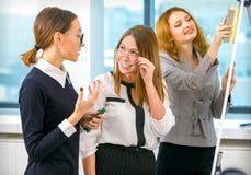 De meisjes communiceren bij het werk in het bureau Stock Foto's