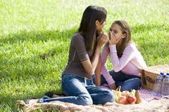 De meisjes die op picknick fluisteren bedekken op gras stock foto's
