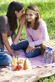 De meisjes die op picknick fluisteren bedekken op gras royalty-vrije stock afbeelding