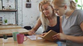 De meisjes leren iets stock videobeelden