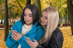 De meisjes lopen in het park en kijken in telefoons Royalty-vrije Stock Afbeeldingen
